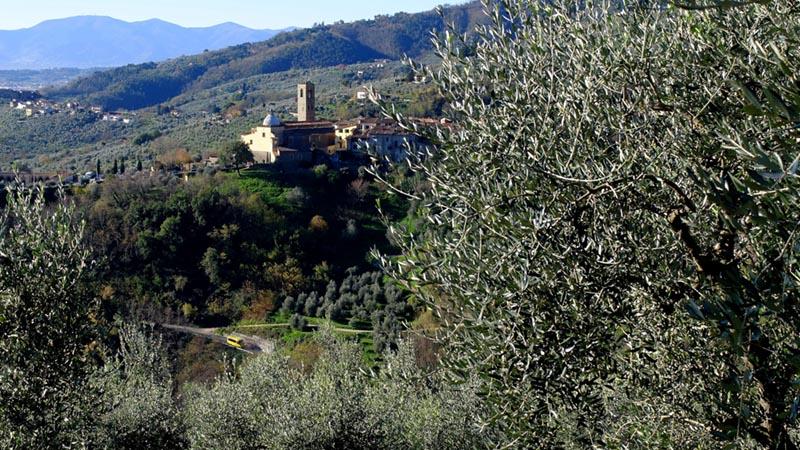 L'ANELLO DI MASSA E COZZILE (COLLINE DELLA VALDINIEVOLE, TOSCANA)