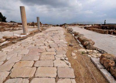 Zippori, una strada romana