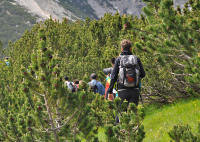 Majella, escursionisti tra i mughi