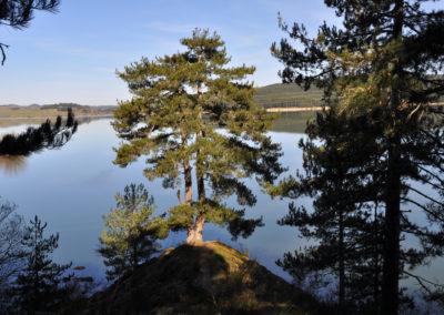 Sila, il Lago di Cecita
